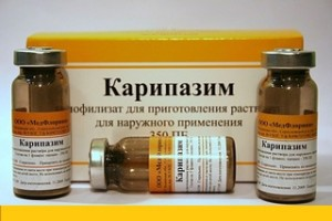 Лечение карипазимом при грыже позвоночника: инструкция по применению