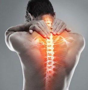 Можно ли самостоятельно укрепить мышцы спины и позвоночника?