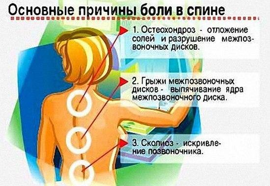 Почему появляются боли в спине, позвоночнике и между лопатками?