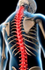 Почему болит область спины